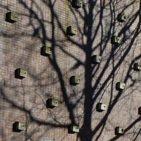 Séminaires « Bâtiment Durable » : Bâti et biodiversité : de l'évaluation à l'intégration architectur_blog_image