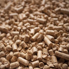 Valorisation de la biomasse_blog_image